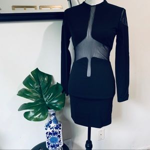 Color Swatch Black Bodycon Dress with Mesh